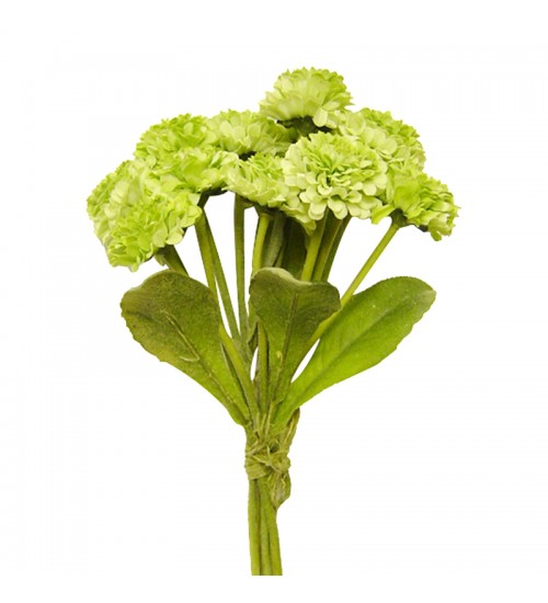 Callistephus Bouquet (Green)