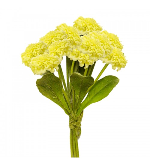 Callistephus Bouquet (Yellow)