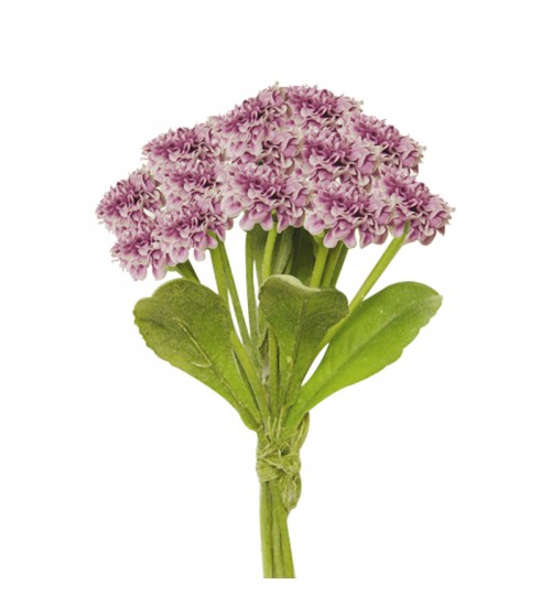 Callistephus Bouquet (Purple)