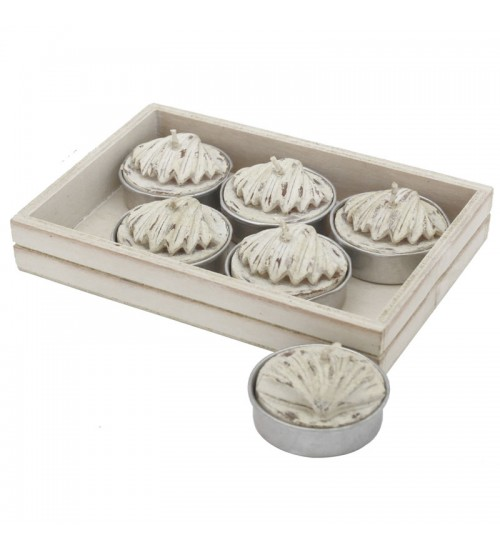 Shell Tealights (6 Pack)