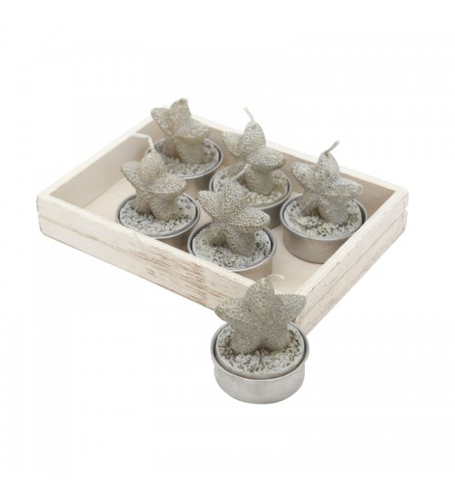 Starfish Tealights B (6 Pack)